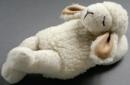 Saling Schaf schlafend mit Schafwolle gefüllt